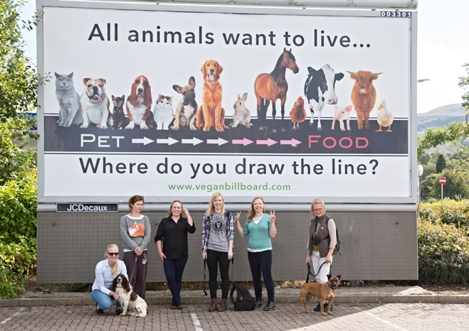 Project Billboard: An Innovative Campaign to Spread the Vegan Message 1