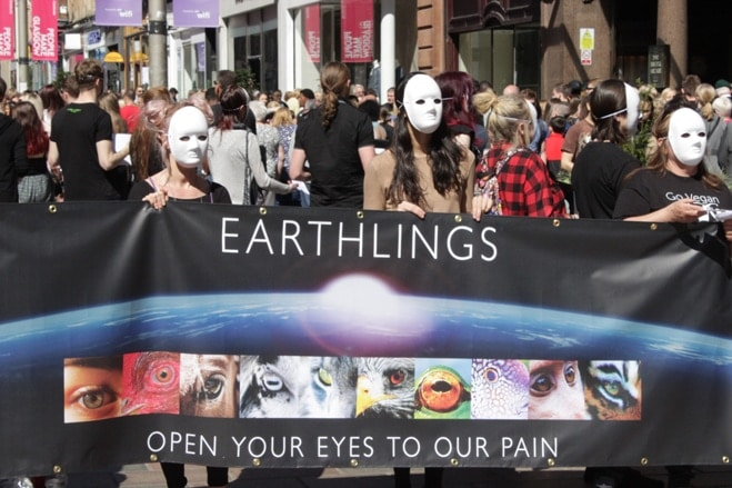 stephen balfour glasgow earthlings experience