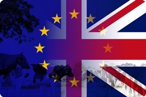 Brexit: The Future of Food in the UK