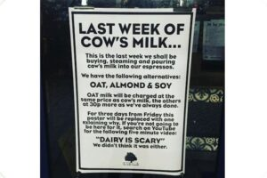 London café completely ditches dairy after watching YouTube video 13