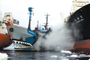 Ocean Warriors: Sea Shepherd on Marine Conservation 15