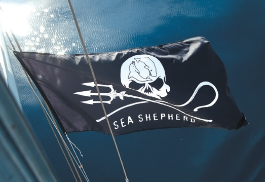 Ocean Warriors: Sea Shepherd on Marine Conservation 1