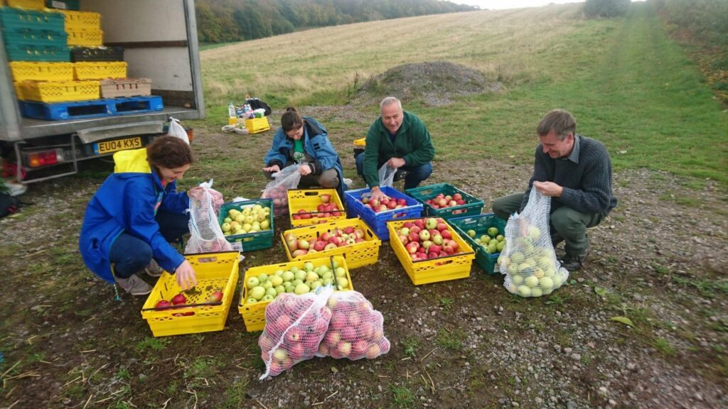 Martin Whybrow: How Gleaning Can Reduce Food Waste 1