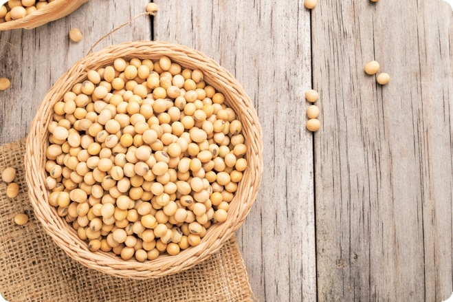 Dispelling the Myths of Soya