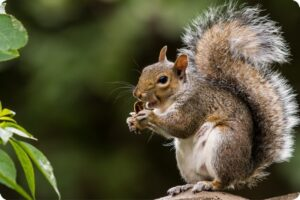 UK Politicians Face Backlash For Supporting A Squirrel Cull 18