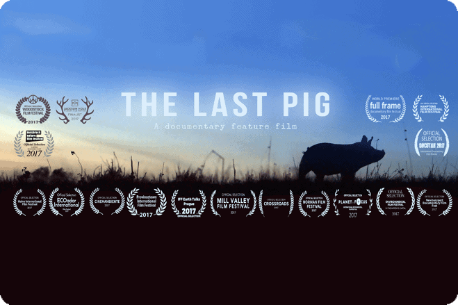 Interview with Allison Argo, Filmmaker of The Last Pig