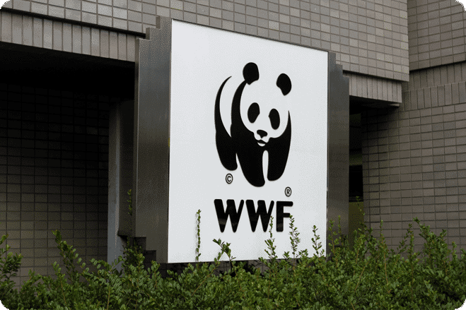 WWF Reports That a Vegan Diet Significantly Reduces Environmental Impact