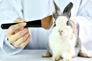 Potential Breakthrough in the Fight Against Animal Testing 2