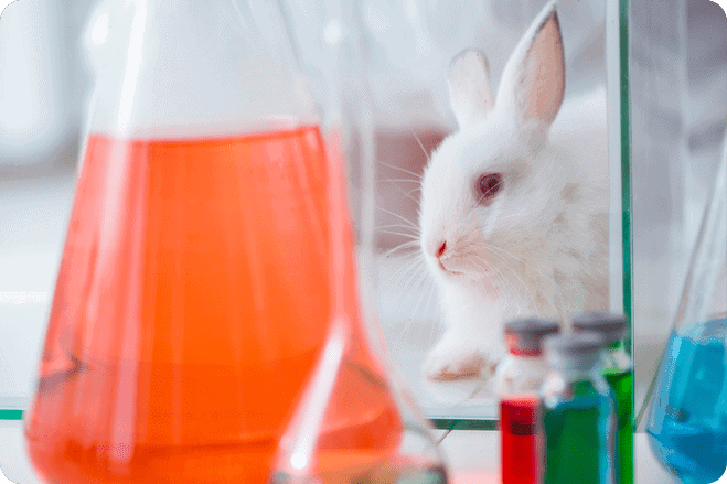Artificial Intelligence could see the end of animal testing.