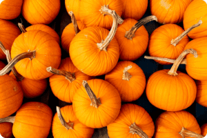 Five Ways To Use Up Your Pumpkin 15