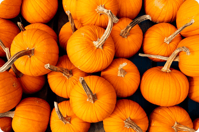 Five Ways To Use Up Your Pumpkin