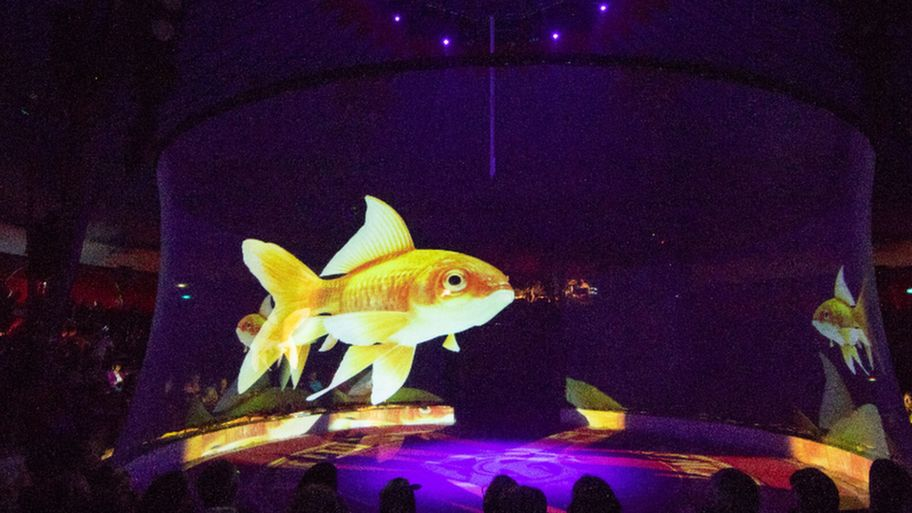 Circus replaces animals with holograms and the results are stunning 3