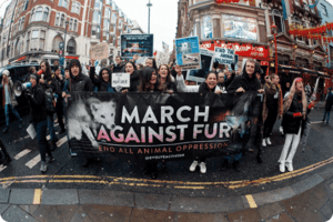 house of fraser revoke anti fur policy