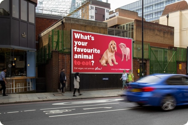 Provocative Viva! billboards will make you stop and think